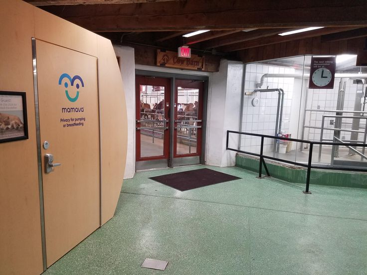 There's A Breast Pumping Station in the Farm Milking Parlor at my local zoo