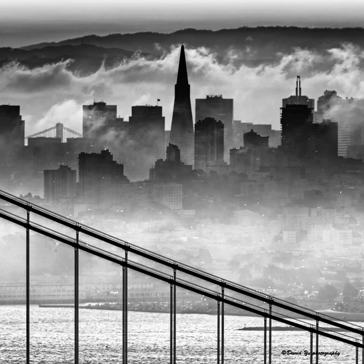 San Francisco Fog Map Live%0A Awesomely surreal  but real  photo of a foggy San Francisco morning  cityscape  I think a very large version of this print will be in my Study