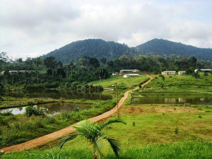 Nkolandom dans le Sud du pays. Le meilleur du Cameroun, le temps d'un voyage. Le tour du pays en photos par Camernews !