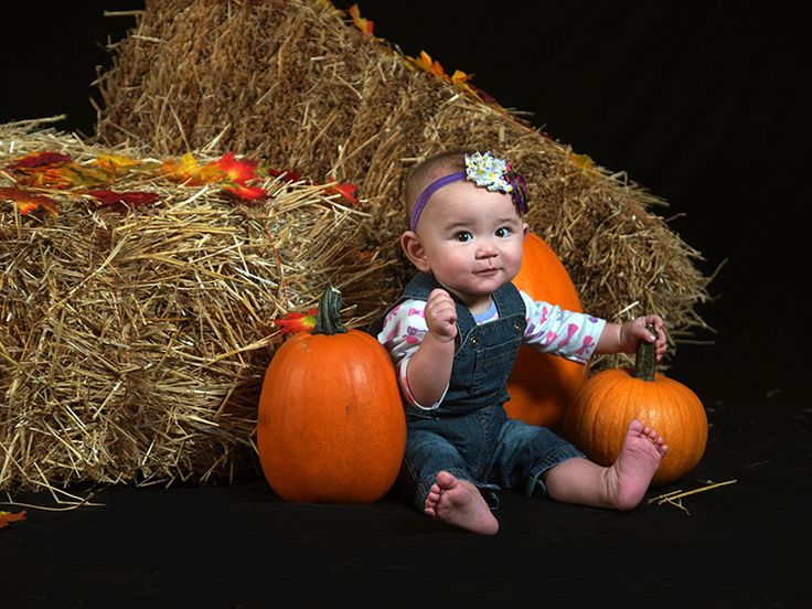 Take advantage of our Fall Harvest Photo Set at Y&Y Photography Studios in Legal, Alberta!