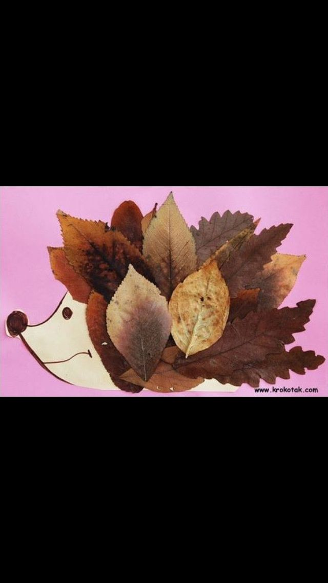 a creative story about the autumn and the fall of leaves Autumn, also known as fall in american and canadian english,  one of its main features is the shedding of leaves from deciduous trees.