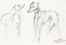 Paulette Lagosse Chien Levrier Chasse Sighthound Dog Montmedy Reynols Hermès