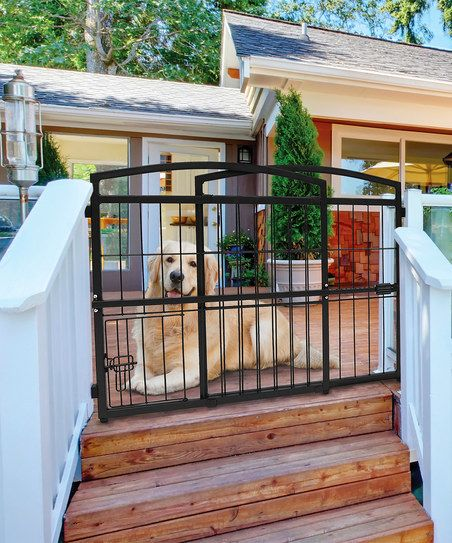 Carlson Pet Products Indoor/Outdoor Expandable Extra-Tall Pet Gate   zulily