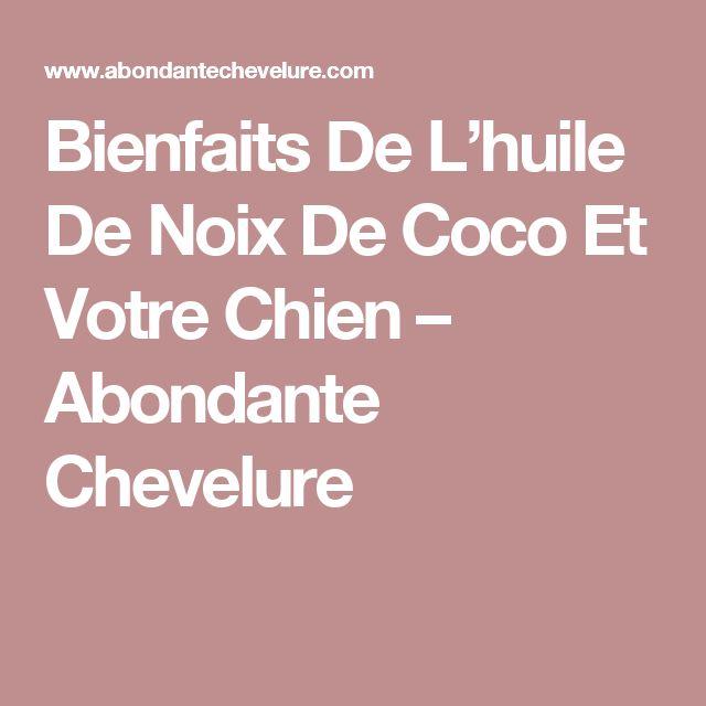 Bienfaits De L'huile De Noix De Coco Et Votre Chien – Abondante Chevelure