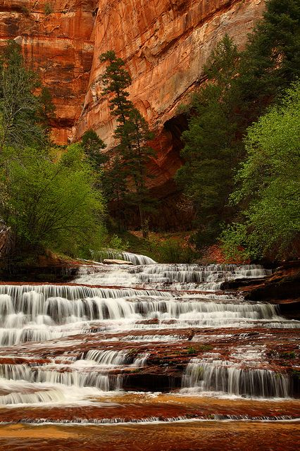 Left Fork, North Creek Falls, Zion National Park // Zion National Park is located near Springdale, Utah, in Washington, Iron, and Kane counties. Streams in the area take rectangular paths because they follow jointing planes in the rocks.