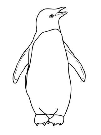 Adelie Penguin Coloring Page Penguin Coloring Penguin