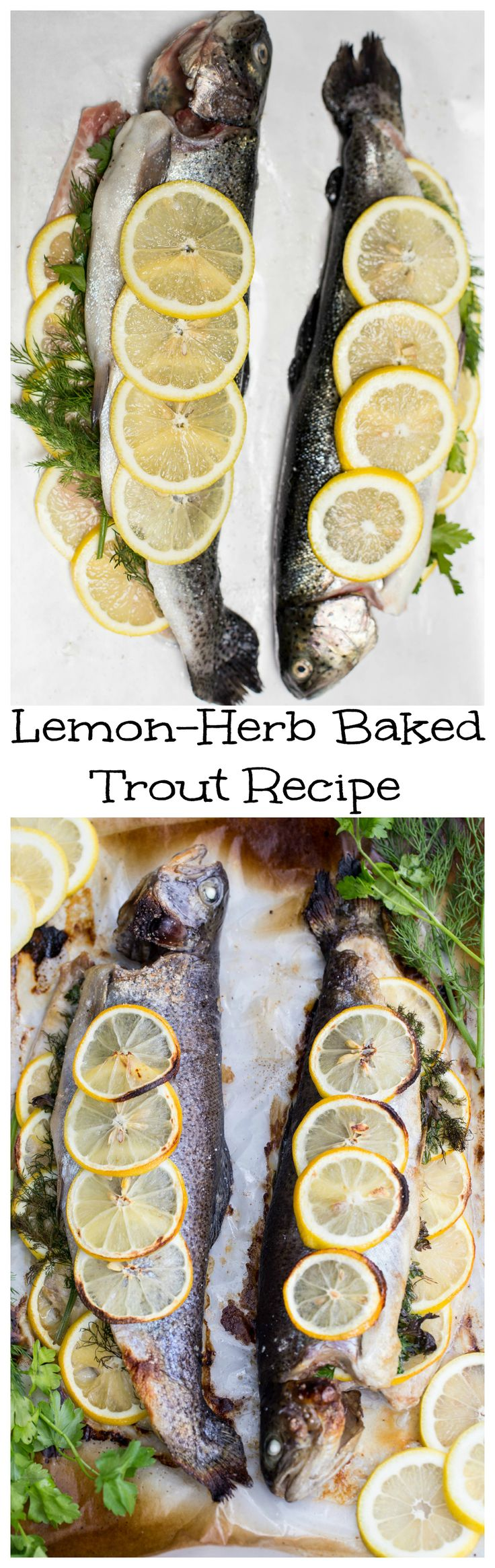 This recipe is incredible. Healthy, delicious and so quick to prepare. This type of dish makes it easy being a home cook.