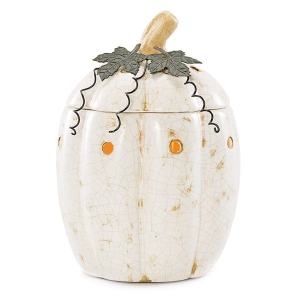 Rustic Pumpkin Scentsy Warmer $40 Like the natural-born beauty that inspired it, Rustic Pumpkin brings an earthy, sophisticated look to any display.