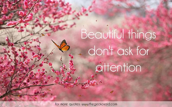 Beautiful things don't ask for attention.  #ask #attention #beautiful #nature #quotes #things