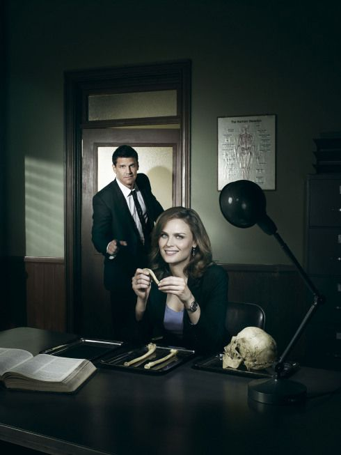 Bones Season 5 Promotional Shot of Brennan and Booth in an Office