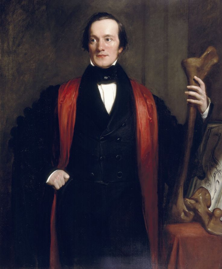 """Sir Richard Owen (1804-1892) was an English biologist, comparative anatomist and paleontologist. Owen is generally considered to have been an outstanding naturalist with a remarkable gift for interpreting fossils.  He produced a vast array of scientific work, but is probably best remembered today for coining the word """"Dinosauria"""" or """"Dinosaur"""" (meaning """"Terrible Reptile"""" or """"Fearfully Great Reptile"""")."""