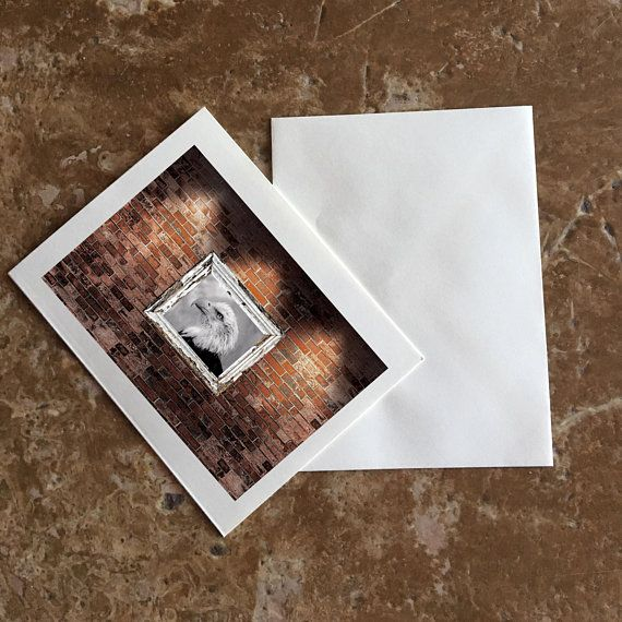 Blank 5 X 7 Notecards With An Affixed 4 X 6 Photograph That Is Ready For Your Personalized Greeting And Shipping Is Includ Note Cards Graphic Image Blank Cards