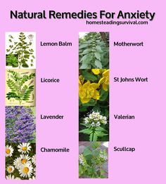 Natural Anxiety Remedies! More info here: http://homesteadingsurvival.com/natural-anxiety-remedies/