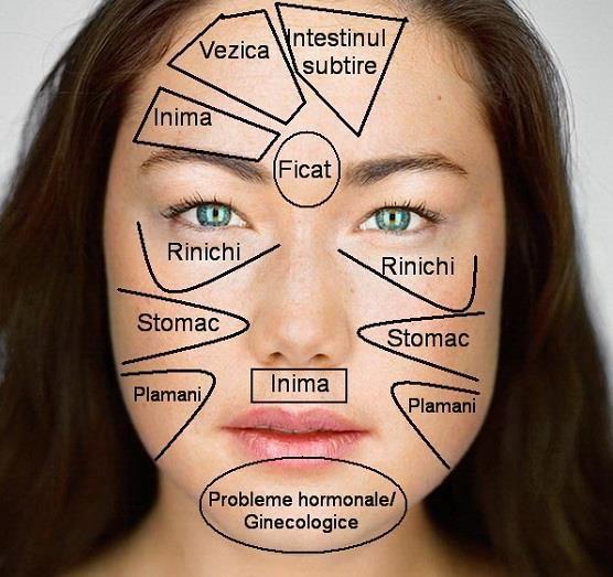 ATENȚIE la semnele pe care ți le dă corpul! Harta feței în medicina chineză. Cum îți dai seama ce probleme de sănătate ai