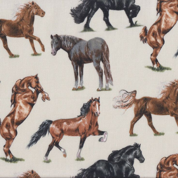 Horse Breeds on Cream Brown Black Grey Horses Country Quilt Fabric - Find a Fabric. Available to purchase in Fat Quarters, Half Metre, 3/4 Metre, 1 Metre and so on.