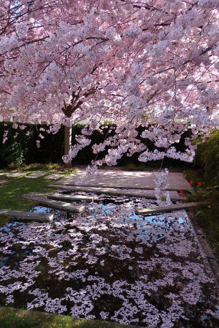 Eva Wagnerová | soukromé zahrady / private garden | Trnka