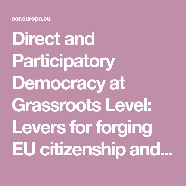 Direct and Participatory Democracy at  Grassroots Level:  Levers for forging EU citizenship and identity?