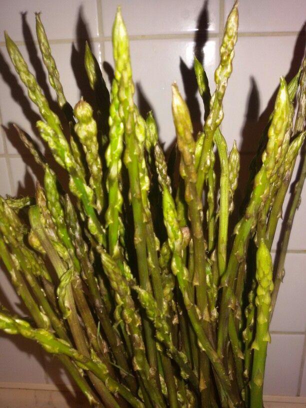 Asparagi selvatici #siciliachecinquetta