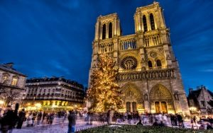 Preview wallpaper notre dame, notre dame de paris, paris, france, area, new year, christmas tree, holiday