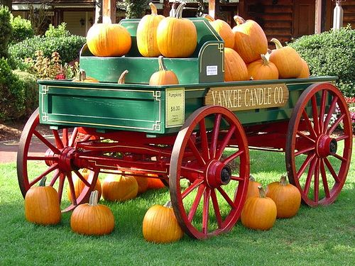72 Best Images About Wagon Decorating On Pinterest