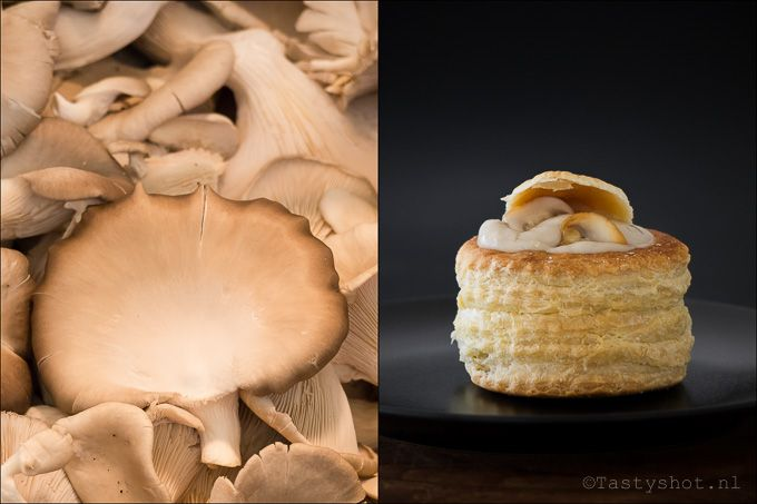 Paddenstoelenragout een echt herfst recept, lekker met rijst, brood, en natuurlijk in een pasteibakje. / mushroom ragout.  Photography © www.tastyshot.nl