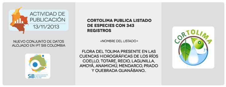 Actividad de publicación 13/11/2013