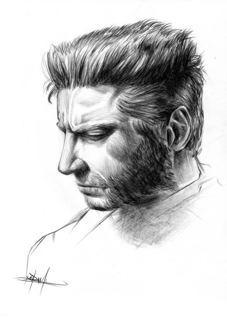 Wolverine/Hugh Jackman, retrato a lápiz
