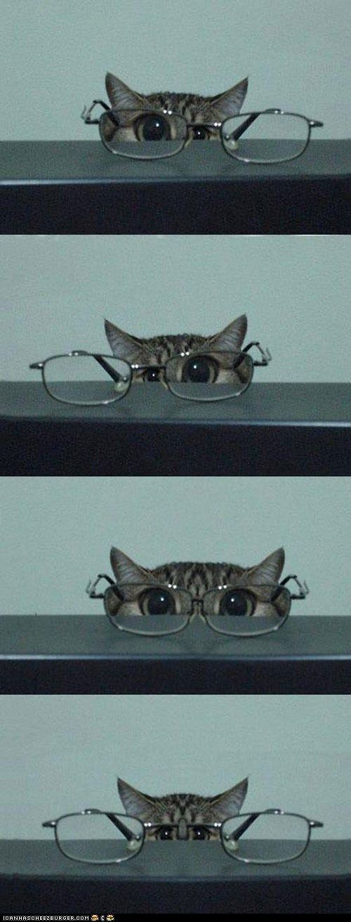 ~~* I Can See You Better *~~