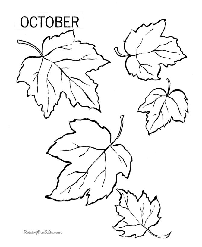 Autumn leaves coloring pages for