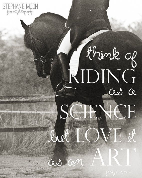 Horseback Riding fine art print horse quote quote by stephaniemoon, $30.00