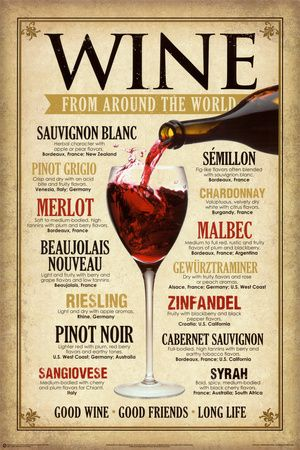 Wine Around the World Pôsters na AllPosters.com.br