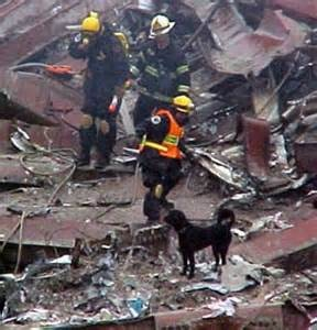 Connie Millard and her boy Dutch during the search and rescue at the World Trade Center.