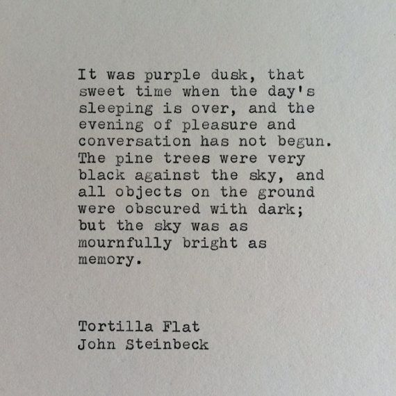 tortilla flat by john steinbeck essay This paper looks at john steinbeck's tortilla flat and its portrayal of the paisanos community during the great depression it discusses the positive image of the.