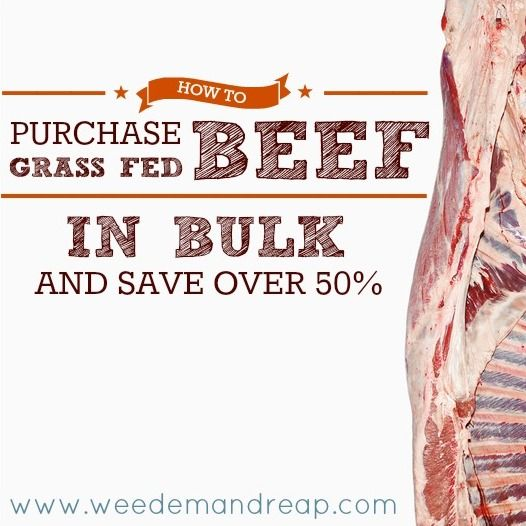 How to purchase grass-fed beef in bulk and save over 50%! - Weed'em & Reap