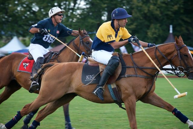 polo players on horses