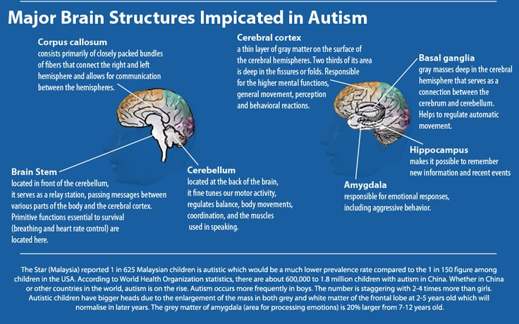 autism and genetics Advances in genetics and genomics have improved our understanding of autism spectrum disorders as many genes have been implicated, we look to points of convergence among these genes across biological systems to better understand and treat these disorders.