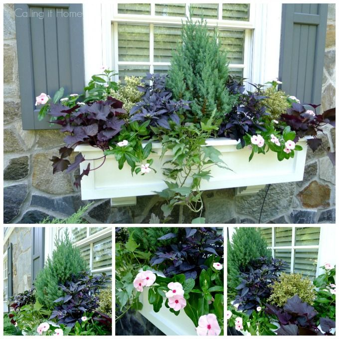 Bay Window Garden Ideas elegant landscaping for front yard with green seagrass decor ideas and plants Summer Window Boxes Window Boxes Summerbox Gardengarden Ideasfront Windowsbay