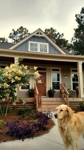#arlingtonplace #goldenretriever #frontporch #gabledormer #woodendoor