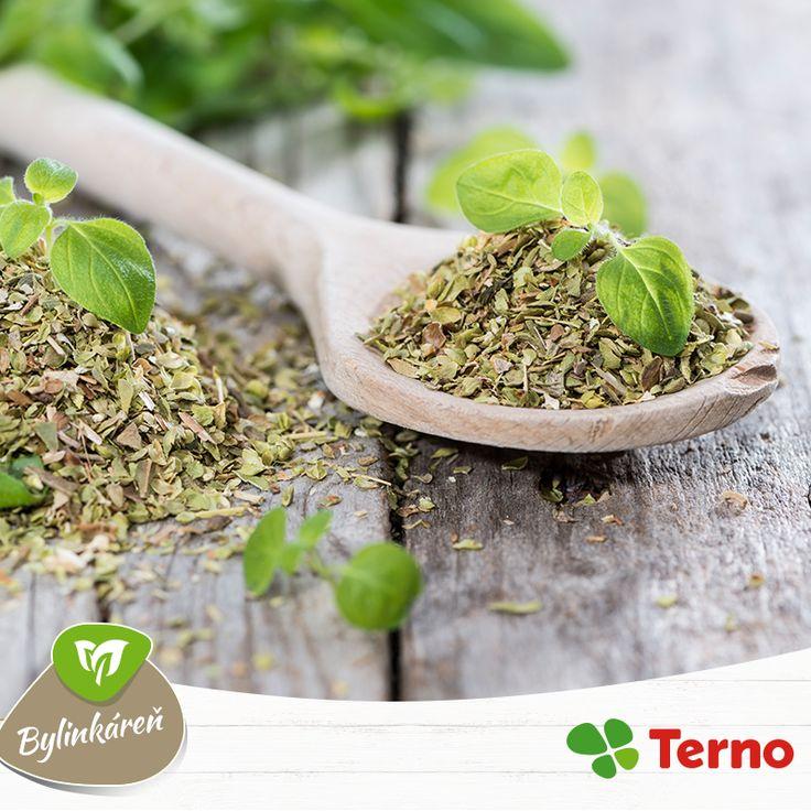 Oregano a majoránka sú v kuchyni veľmi často využívanými bylinkami. Viete však, že odvar z týchto bylín vám pomôže aj pri bolestiach hlavy alebo kŕčoch? Stačí vriacou vodou zaliať sušené alebo čerstvé lístky. Máte vlastný recept na bolesť hlavy? Poraďte nám.