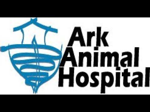 Image of: Veterinary Clinic Ark Animal Hospital Wellness Plan Ark Animal Hospital Wellness Plan Httpshoundhavenclub
