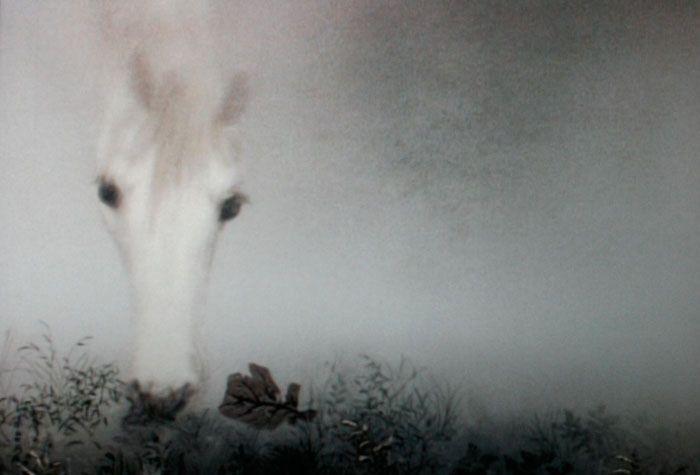 yuri norstein 'Hedgehog in the Fog'