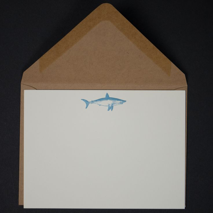 Terrapin Stationers Shark Note Cards at The Lodge
