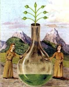 Il Vaso Alchemico come Simbolo dell'Anima - Arte Suprema del Trigono - Blog