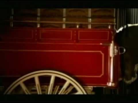 Famous Budweiser Clydesdales horses in tv commercial featuring parents helping their young Clydesdale pull the carriage