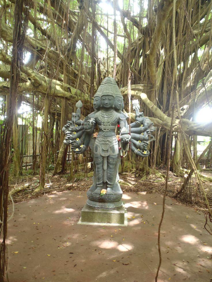 Kauai Hindu Monastery- Kapaa Hawaii (I took this picture :)