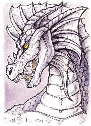 210 best dragon images on pinterest  coloring books