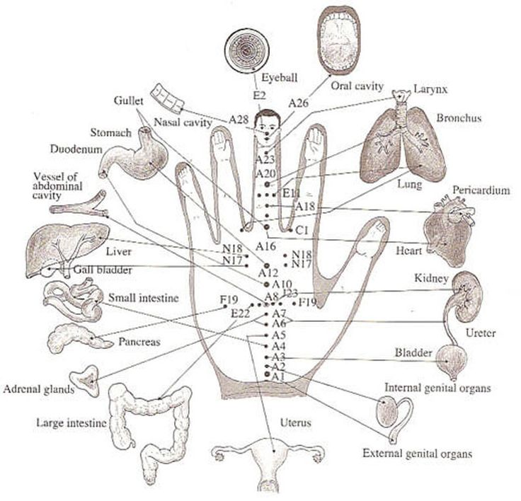 578 best pressure points images on pinterest acupressure points acupuncture points or acupressure points connect meridians to specific internal organs acupuncture points are stimulated to treat deseases ccuart Gallery