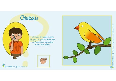 OISEAU  LFS Langue des signes bébé Kestumdis : http://www.kestumdis.fr/