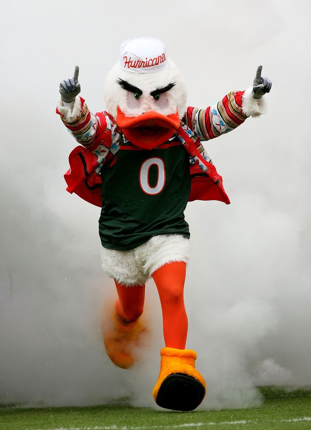 University of Miami | America's Top 25 Colleges: Students Vs. Critics