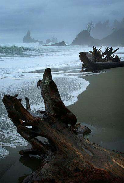 Chthonic, spindled shapes crawling upon the beach; the caliginous ghosts of mountains in the distance